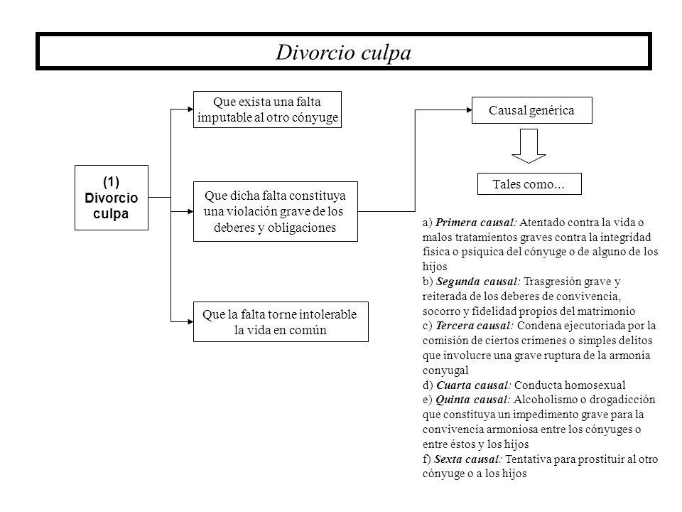 Divorcio culpa Que exista una falta imputable al otro cónyuge