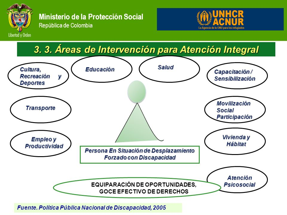 3. 3. Áreas de Intervención para Atención Integral