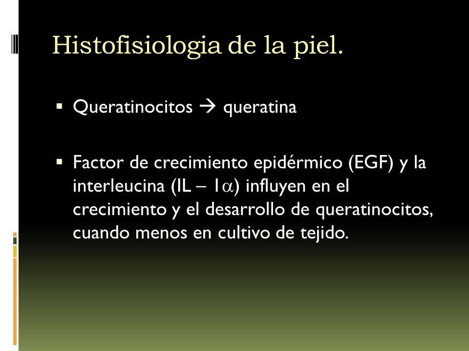 Histofisiologia de la piel.