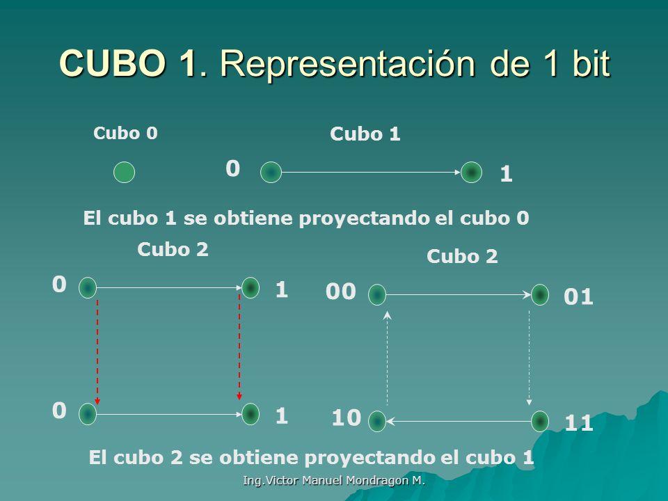 CUBO 1. Representación de 1 bit