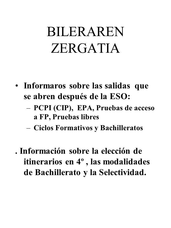 BILERAREN ZERGATIA Informaros sobre las salidas que se abren después de la ESO: PCPI (CIP), EPA, Pruebas de acceso a FP, Pruebas libres.