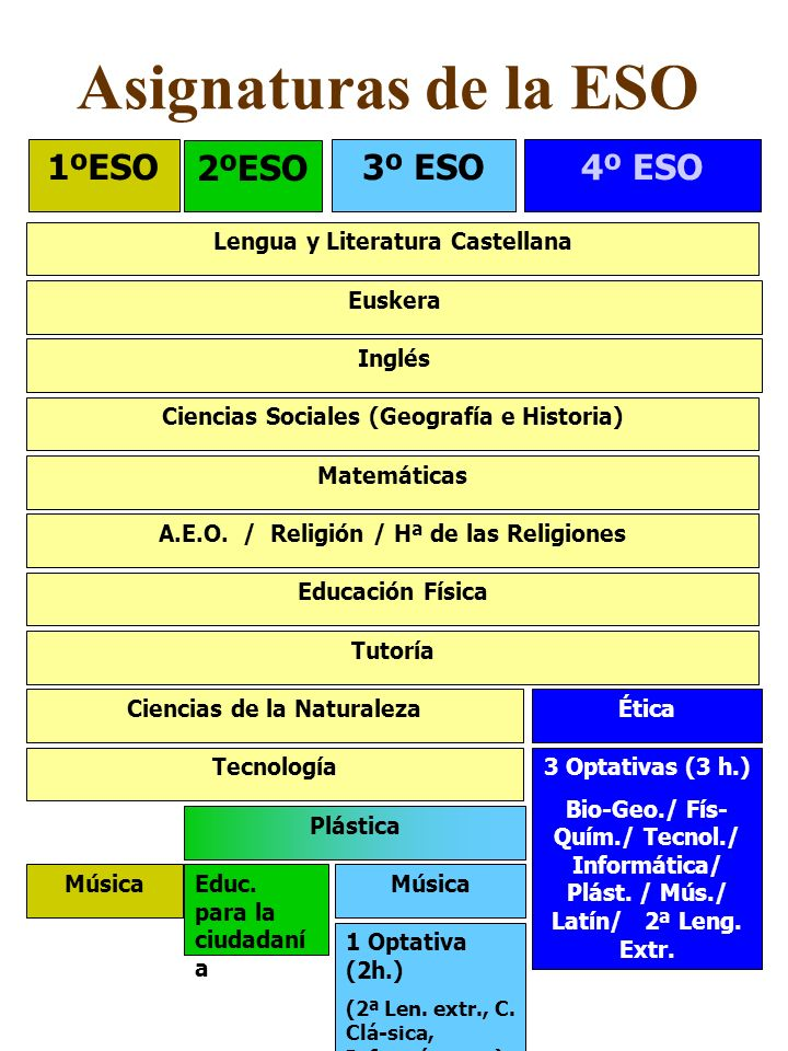 Asignaturas de la ESO 1ºESO 2ºESO 3º ESO 4º ESO