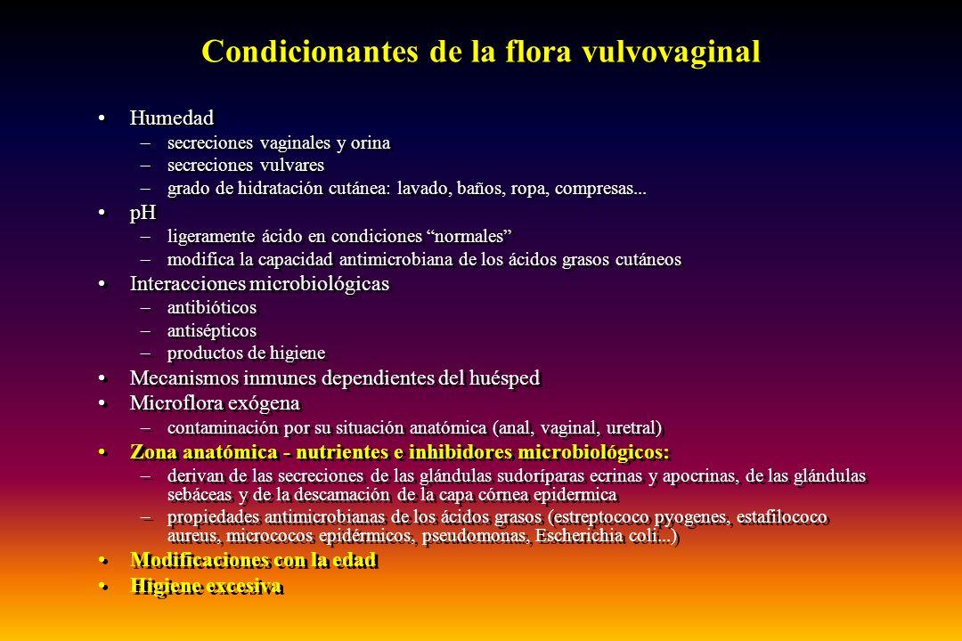 Condicionantes de la flora vulvovaginal
