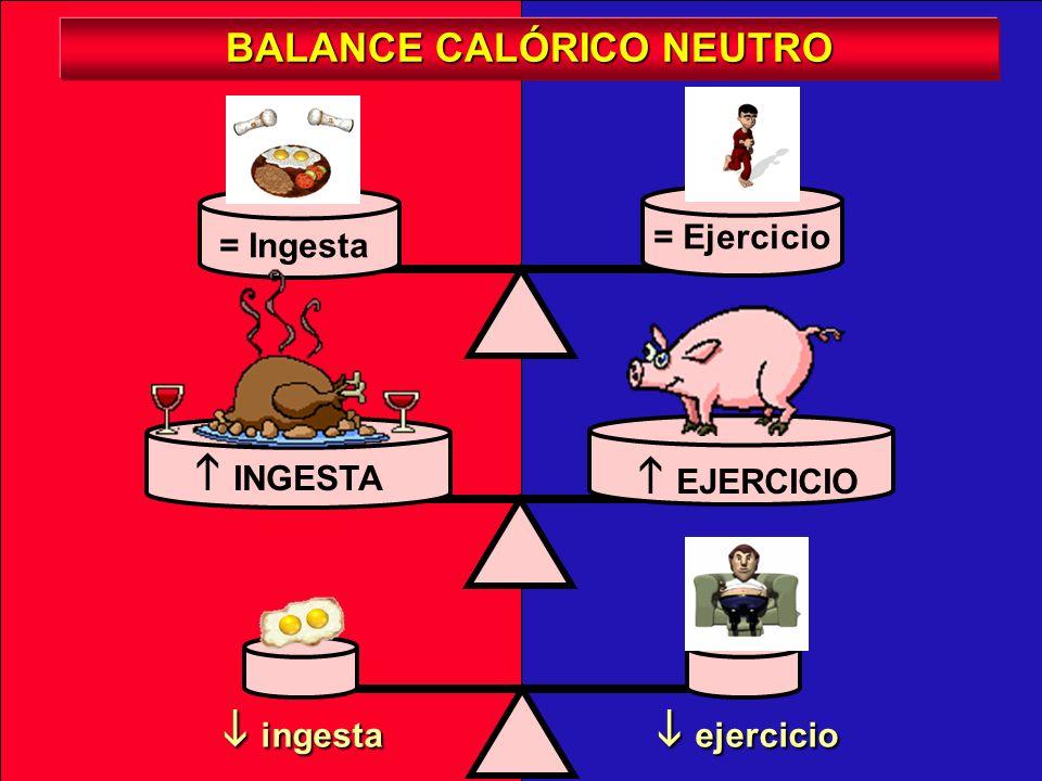 BALANCE CALÓRICO NEUTRO