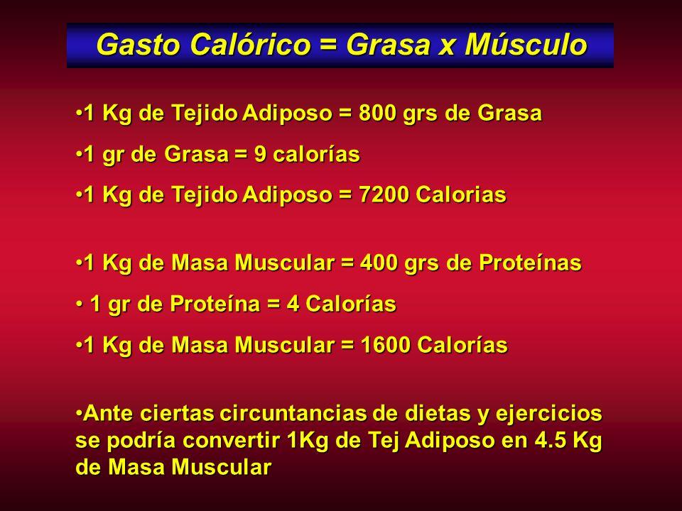 Gasto Calórico = Grasa x Músculo