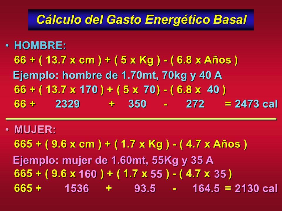 Cálculo del Gasto Energético Basal