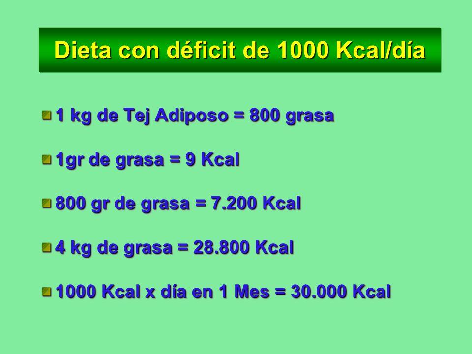 Dieta con déficit de 1000 Kcal/día