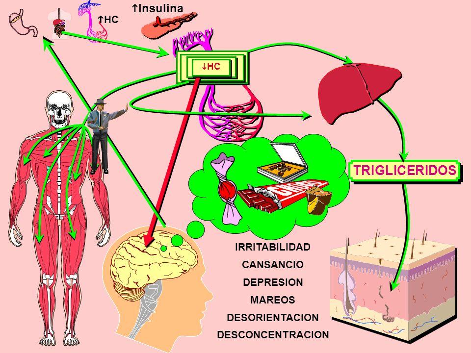 hHC iHC iHC TRIGLICERIDOS hInsulina hHC IRRITABILIDAD CANSANCIO