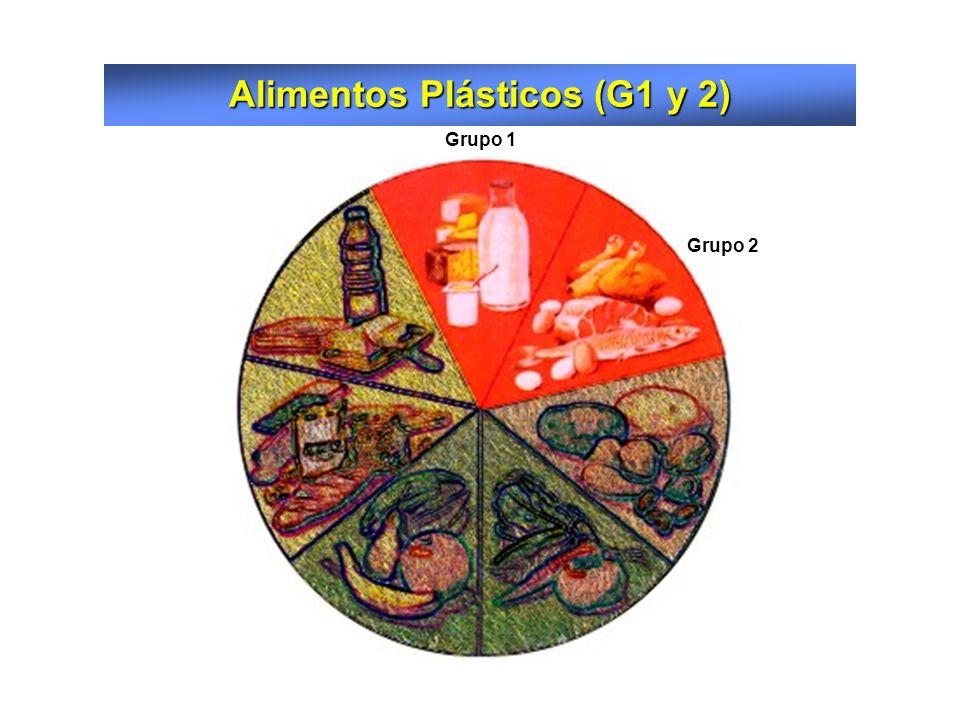 Alimentos Plásticos (G1 y 2)