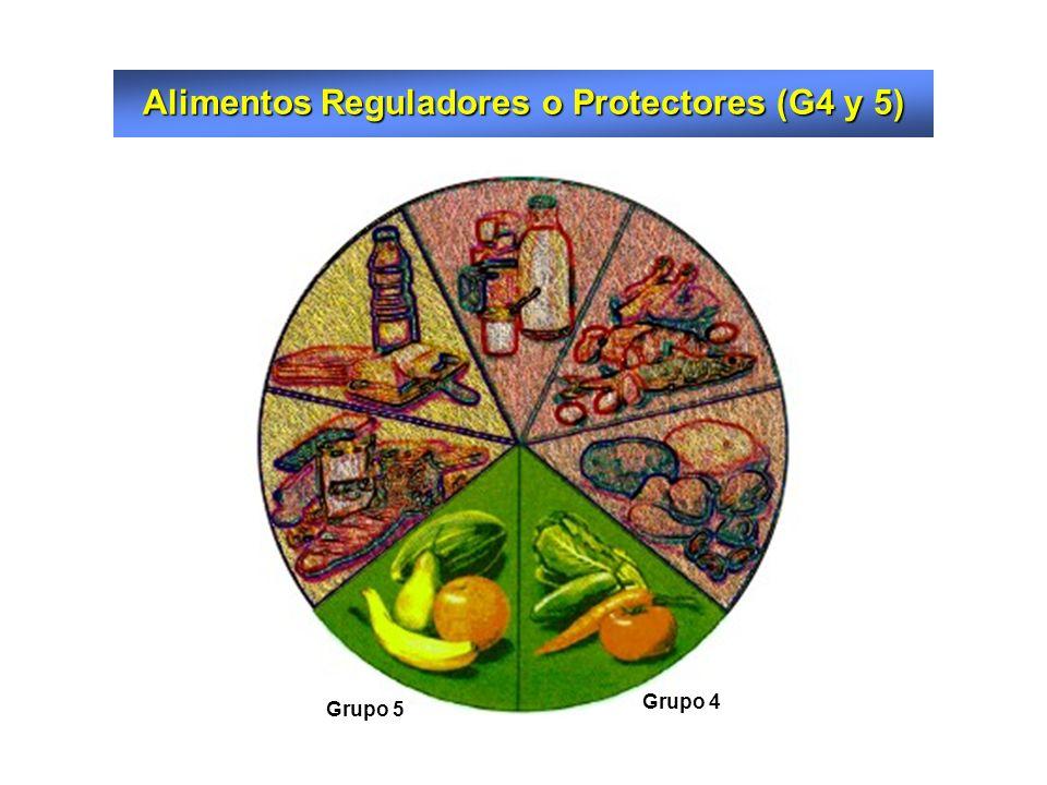 Alimentos Reguladores o Protectores (G4 y 5)