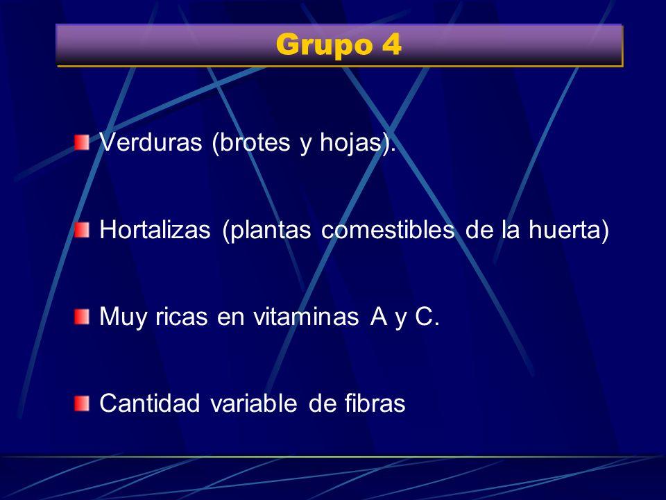 Grupo 4 Verduras (brotes y hojas).