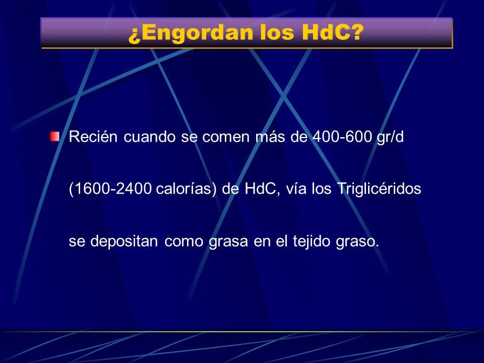 ¿Engordan los HdC
