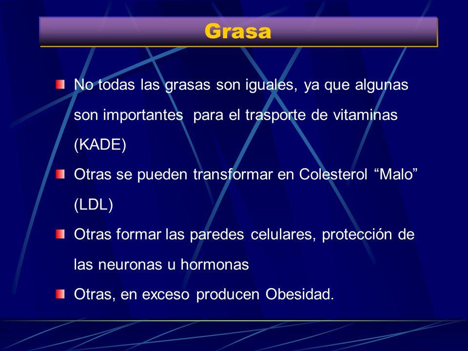 GrasaNo todas las grasas son iguales, ya que algunas son importantes para el trasporte de vitaminas (KADE)