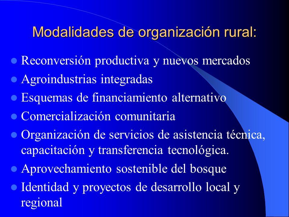 Modalidades de organización rural: