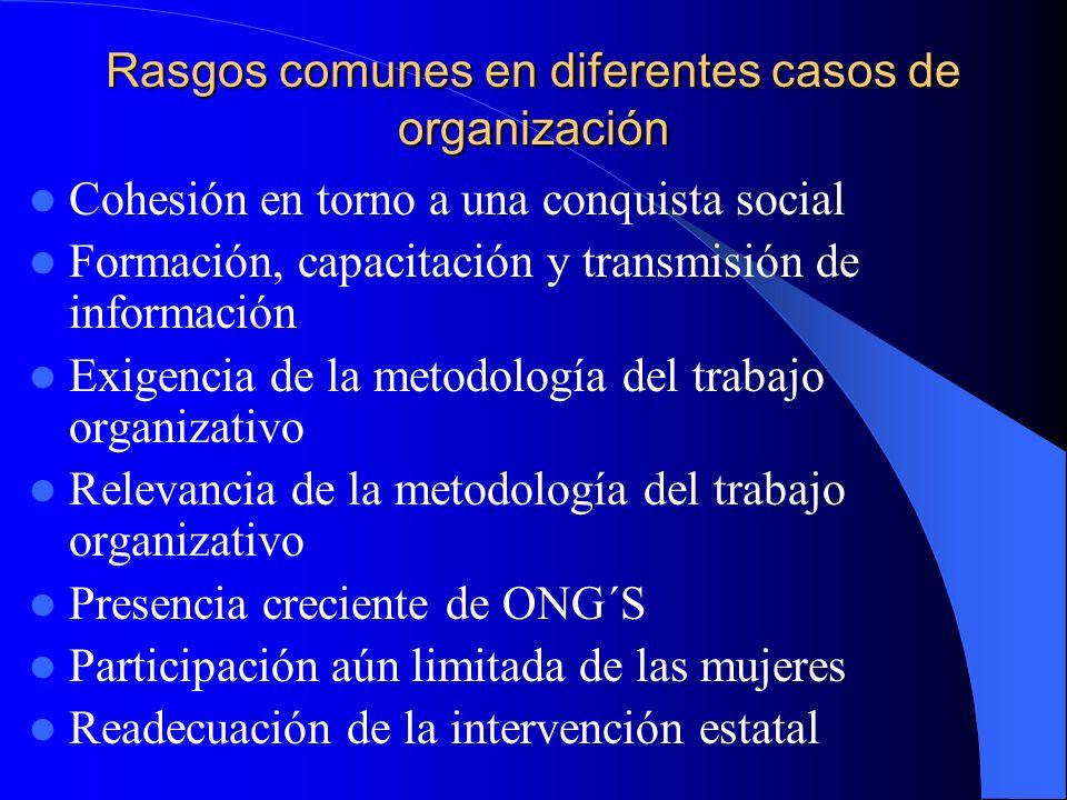 Rasgos comunes en diferentes casos de organización
