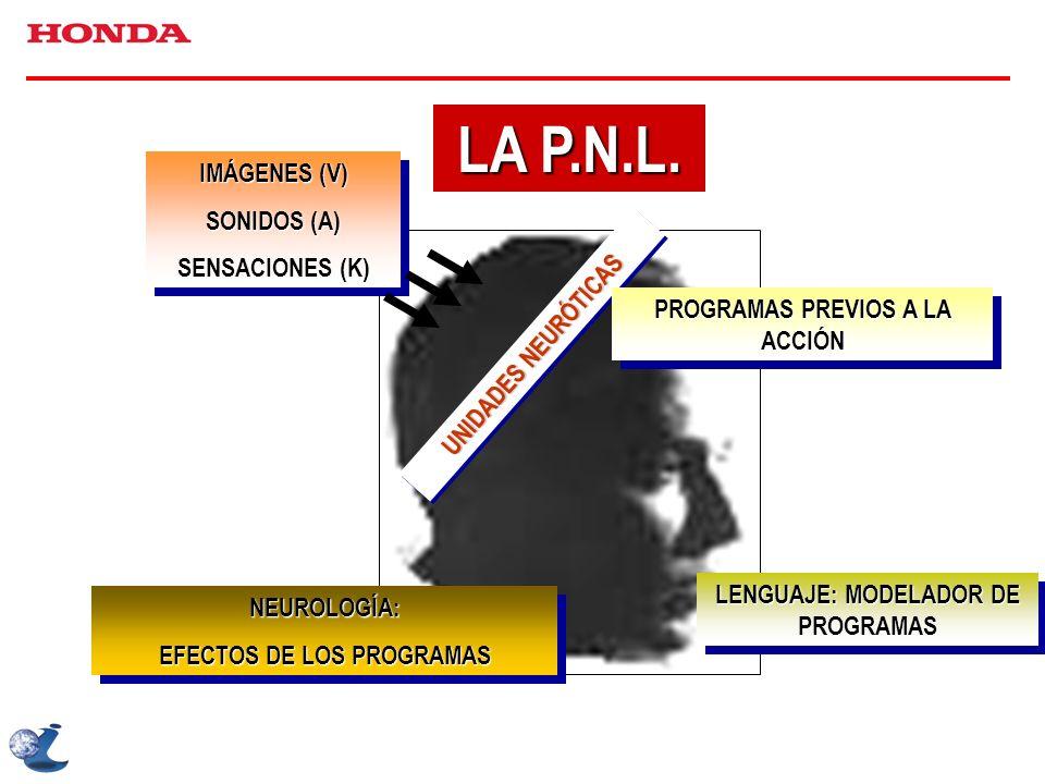 LA P.N.L. IMÁGENES (V) SONIDOS (A) SENSACIONES (K)