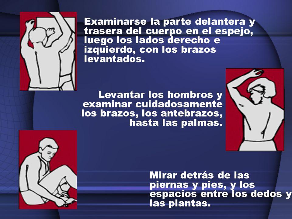 Examinarse la parte delantera y trasera del cuerpo en el espejo, luego los lados derecho e izquierdo, con los brazos levantados.