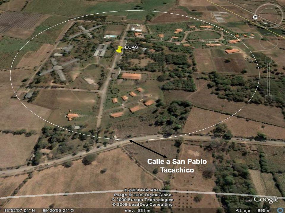 Calle a San Pablo Tacachico