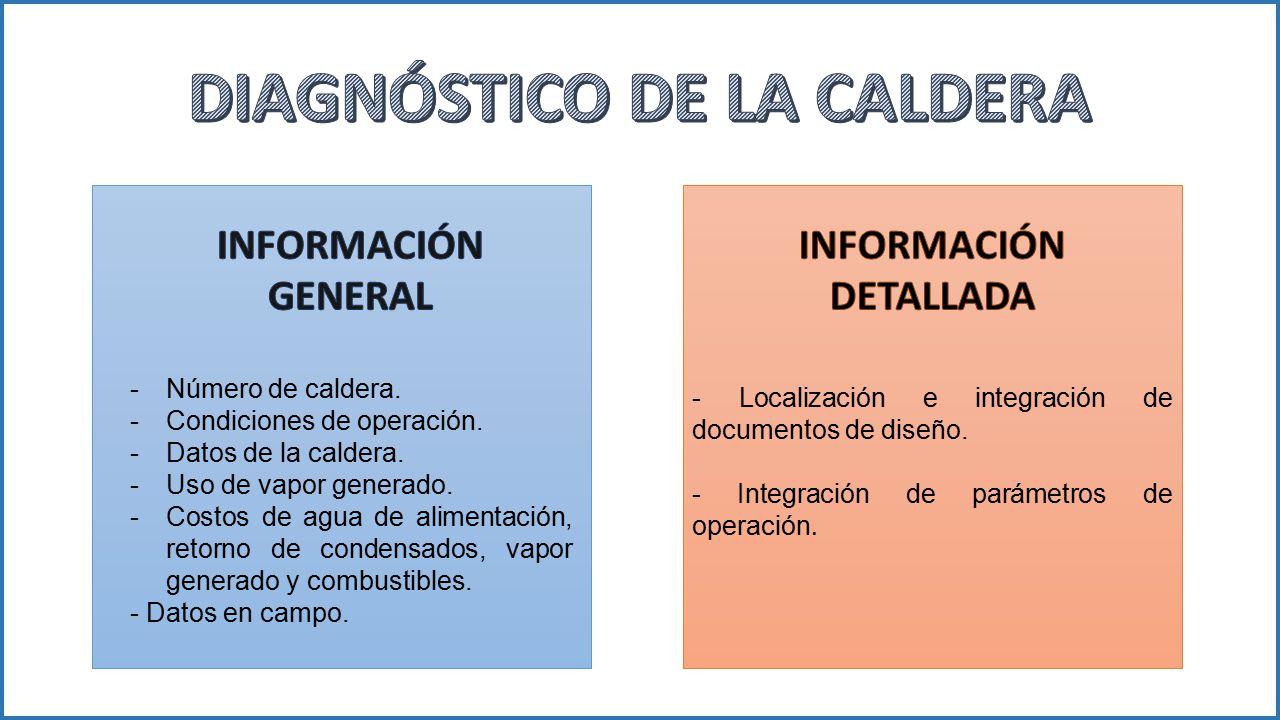 DIAGNÓSTICO DE LA CALDERA INFORMACIÓN DETALLADA