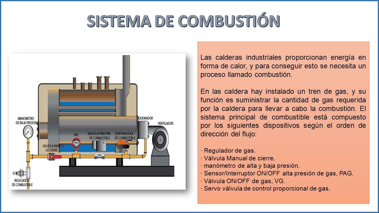 SISTEMA DE COMBUSTIÓN