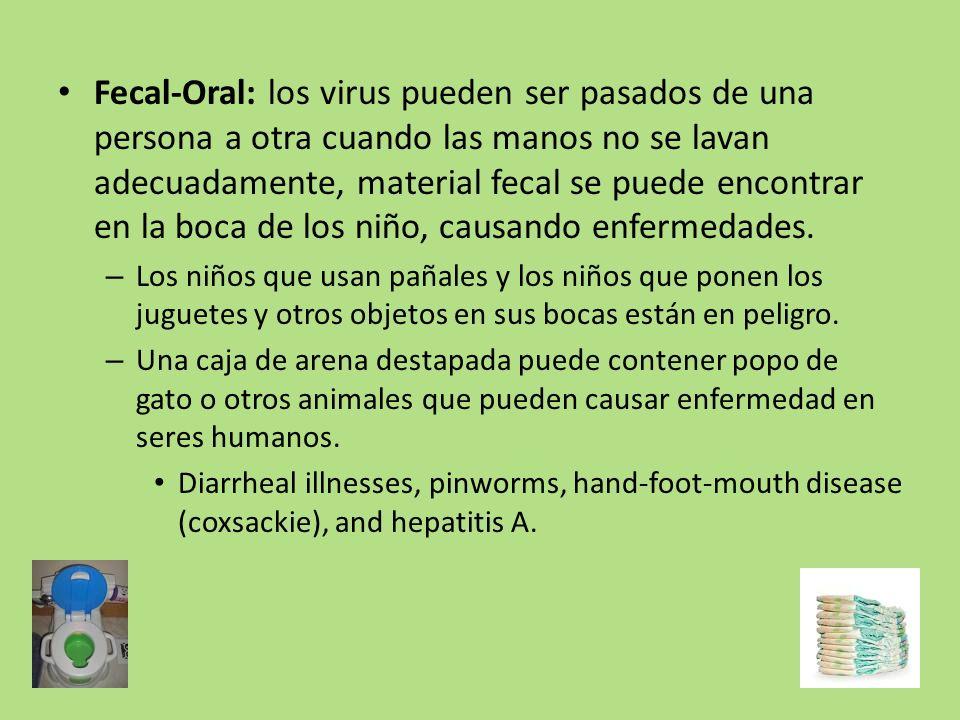 Fecal-Oral: los virus pueden ser pasados de una persona a otra cuando las manos no se lavan adecuadamente, material fecal se puede encontrar en la boca de los niño, causando enfermedades.