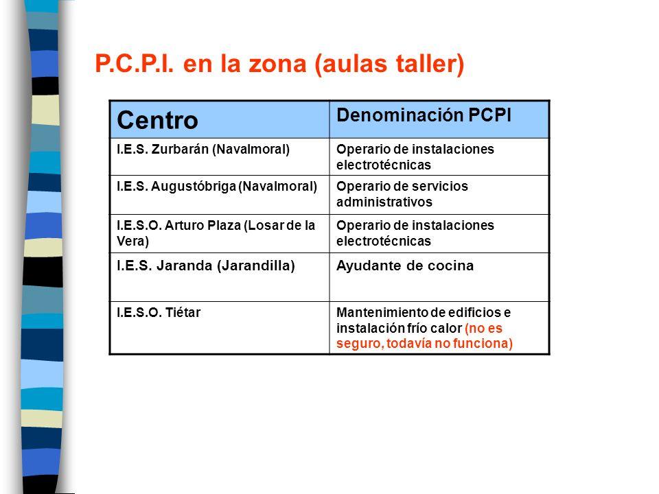 P.C.P.I. en la zona (aulas taller) Centro