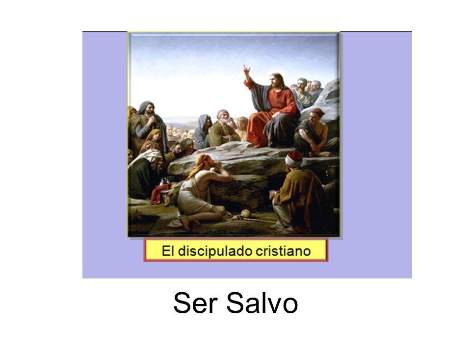 Ser Salvo