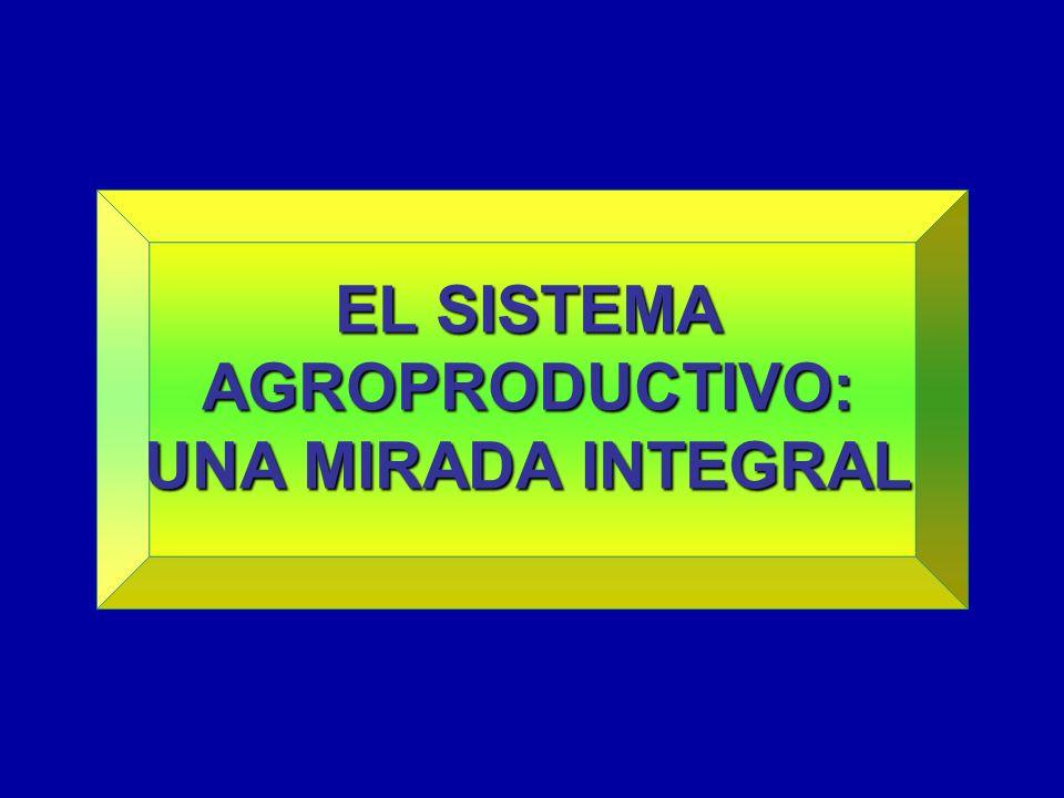 EL SISTEMA AGROPRODUCTIVO: UNA MIRADA INTEGRAL