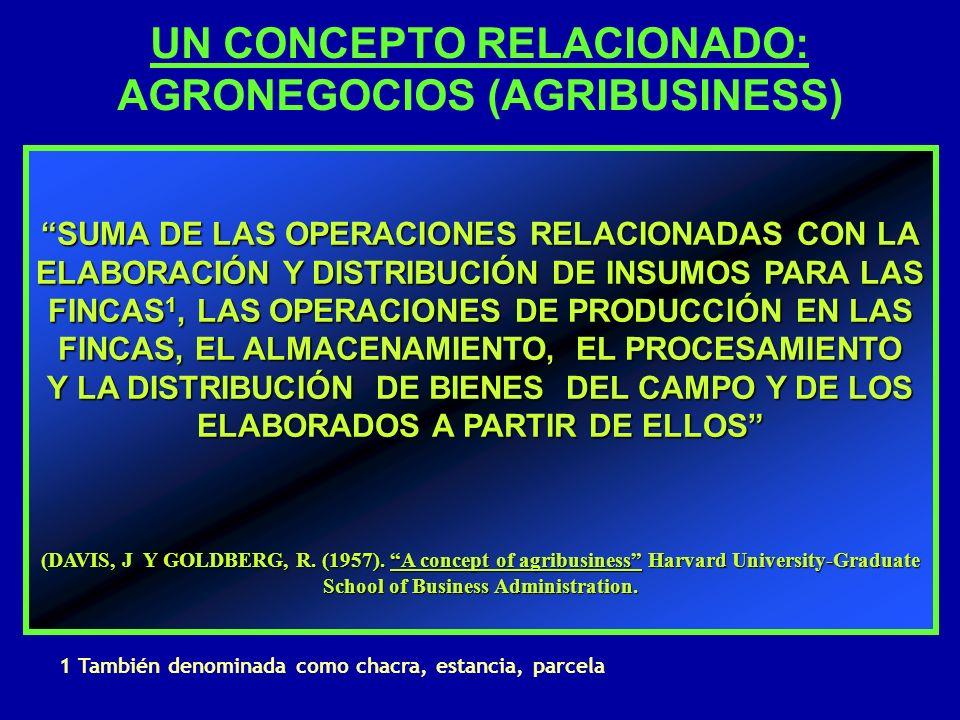 UN CONCEPTO RELACIONADO: AGRONEGOCIOS (AGRIBUSINESS)