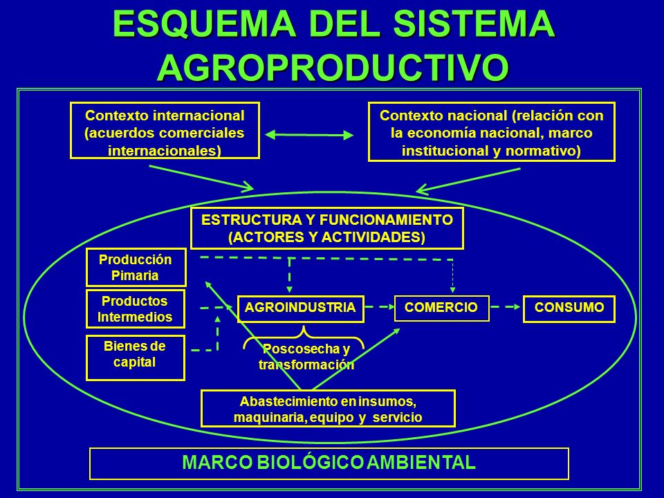 ESQUEMA DEL SISTEMA AGROPRODUCTIVO