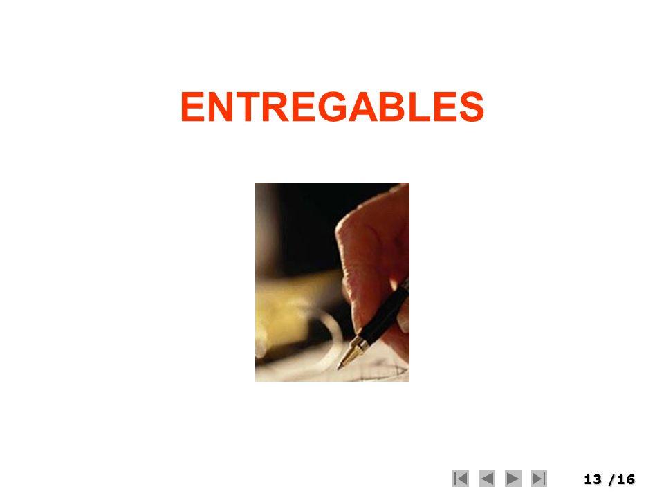 ENTREGABLES