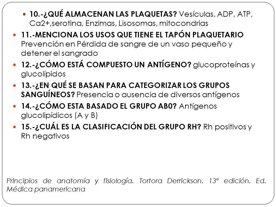 Contemporáneo Principios De La Anatomía Y La Fisiología 12ª Edición ...