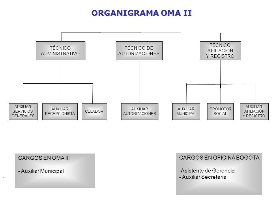 Organigrama oficina nacional ppt descargar for Oficina nacional de fiscalidad internacional