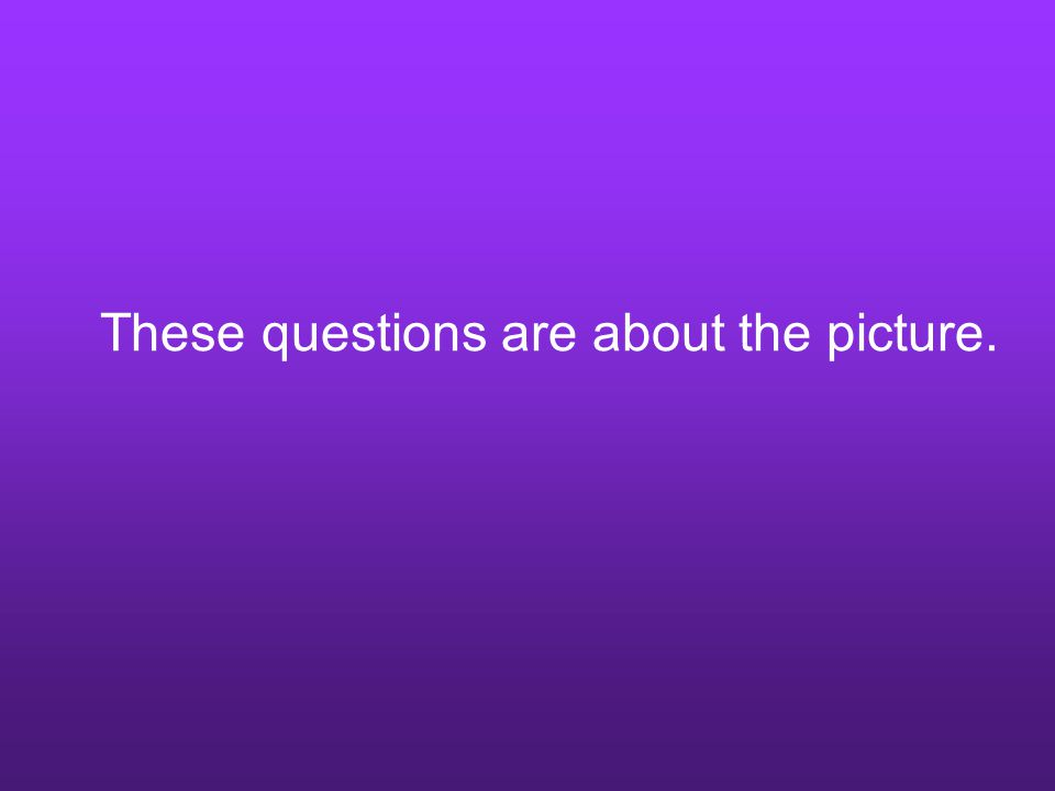 These questions are about the picture.
