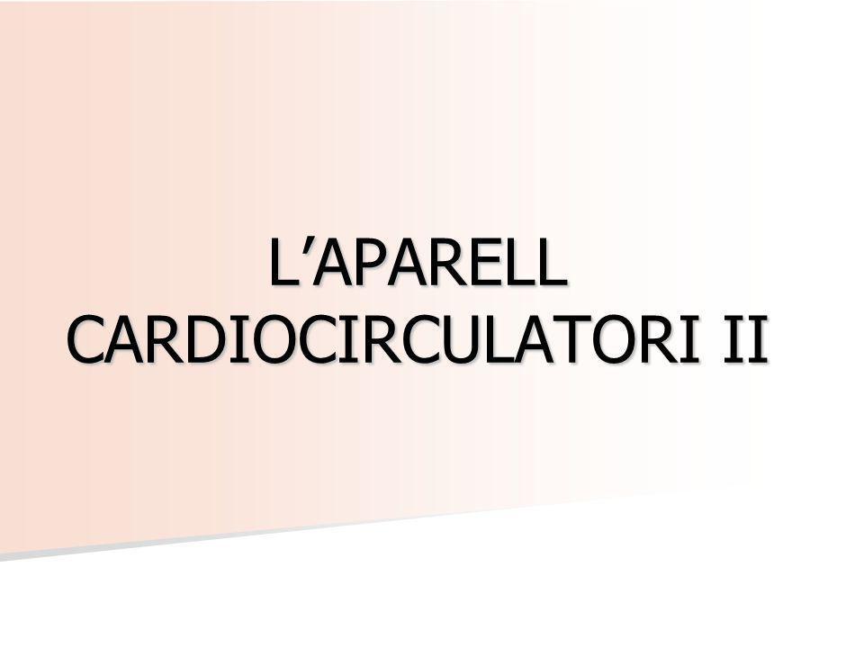 L'APARELL CARDIOCIRCULATORI II
