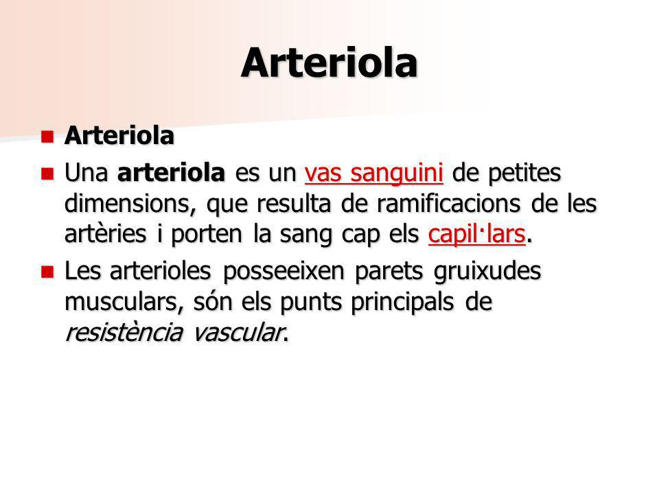 Arteriola Arteriola.