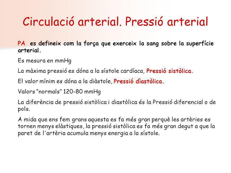 Circulació arterial. Pressió arterial