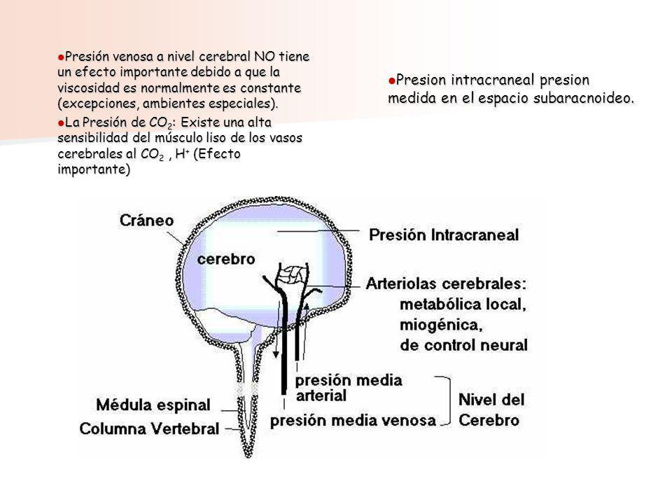Presion intracraneal presion medida en el espacio subaracnoideo.