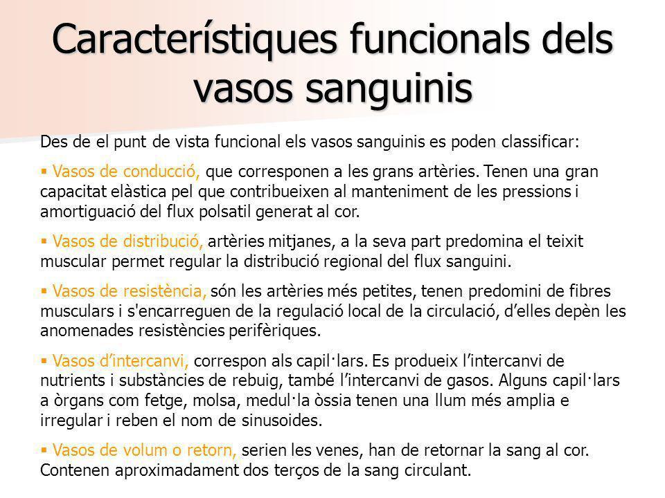 Característiques funcionals dels vasos sanguinis