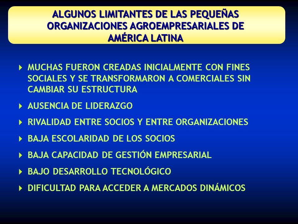 ALGUNOS LIMITANTES DE LAS PEQUEÑAS ORGANIZACIONES AGROEMPRESARIALES DE AMÉRICA LATINA