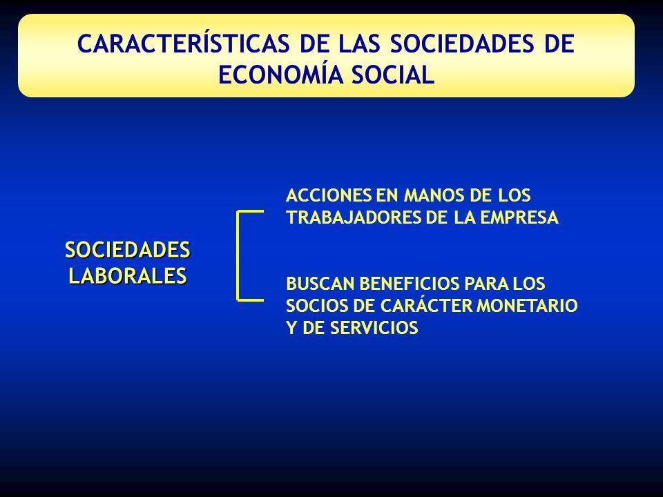CARACTERÍSTICAS DE LAS SOCIEDADES DE ECONOMÍA SOCIAL