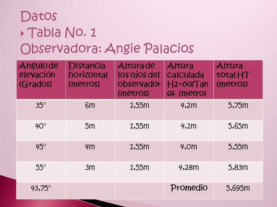 Observadora: Angie Palacios
