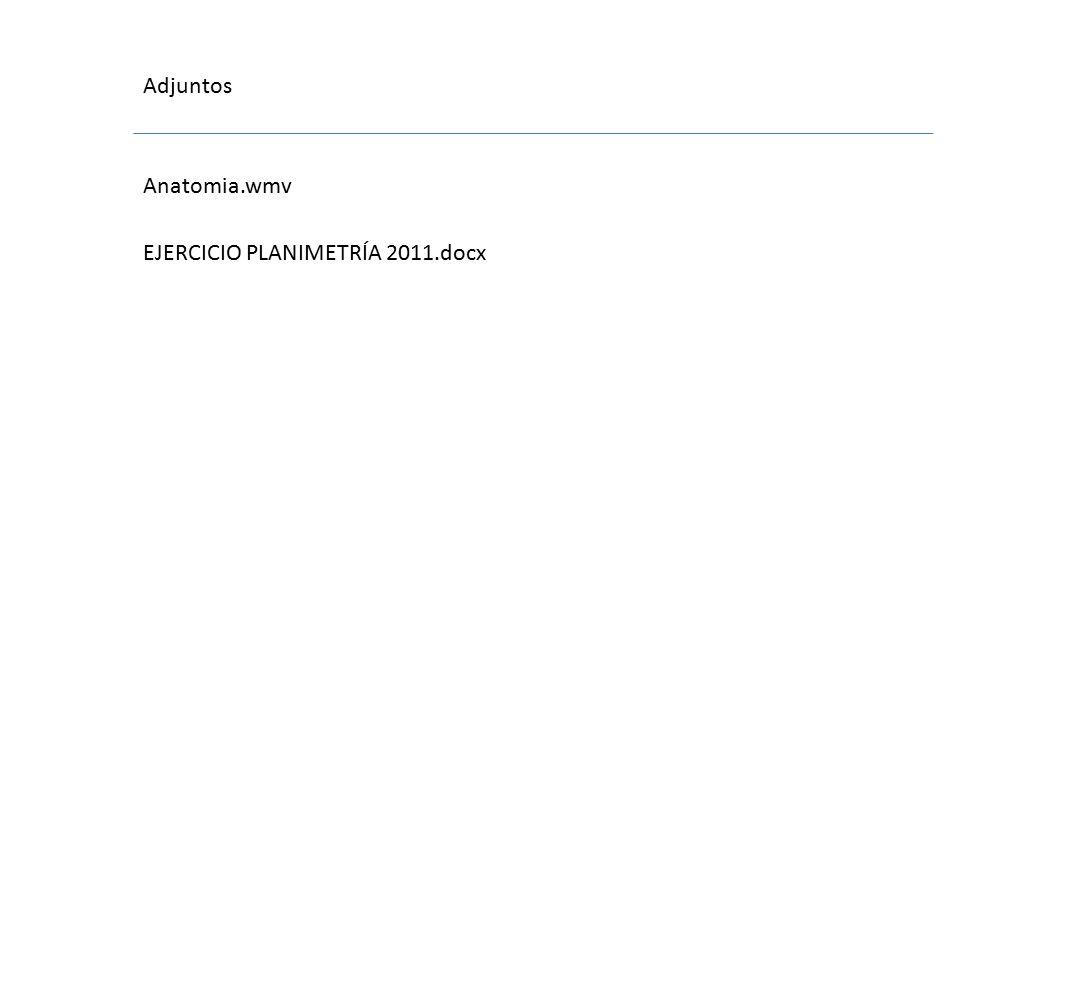Adjuntos Anatomia.wmv EJERCICIO PLANIMETRÍA 2011.docx