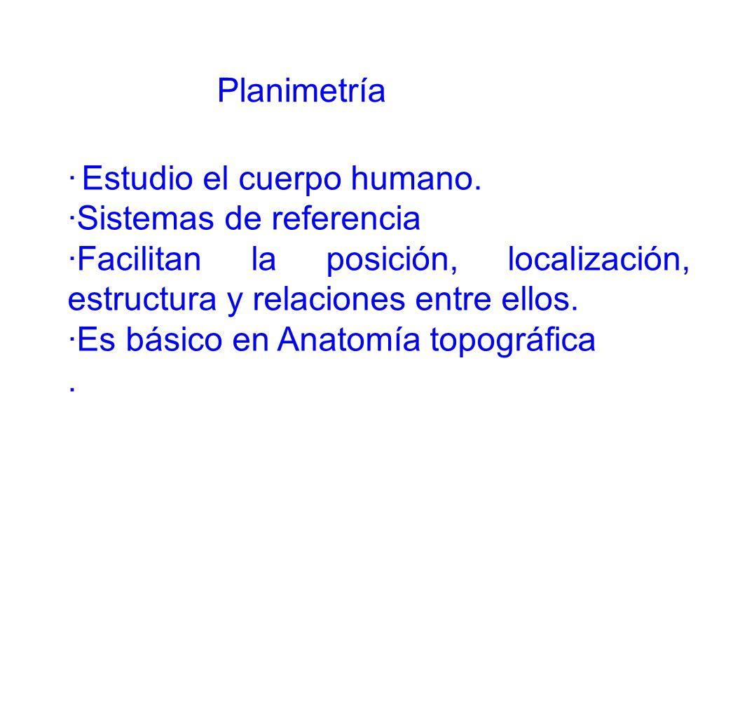 Planimetría · Estudio el cuerpo humano. ·Sistemas de referencia. ·Facilitan la posición, localización, estructura y relaciones entre ellos.
