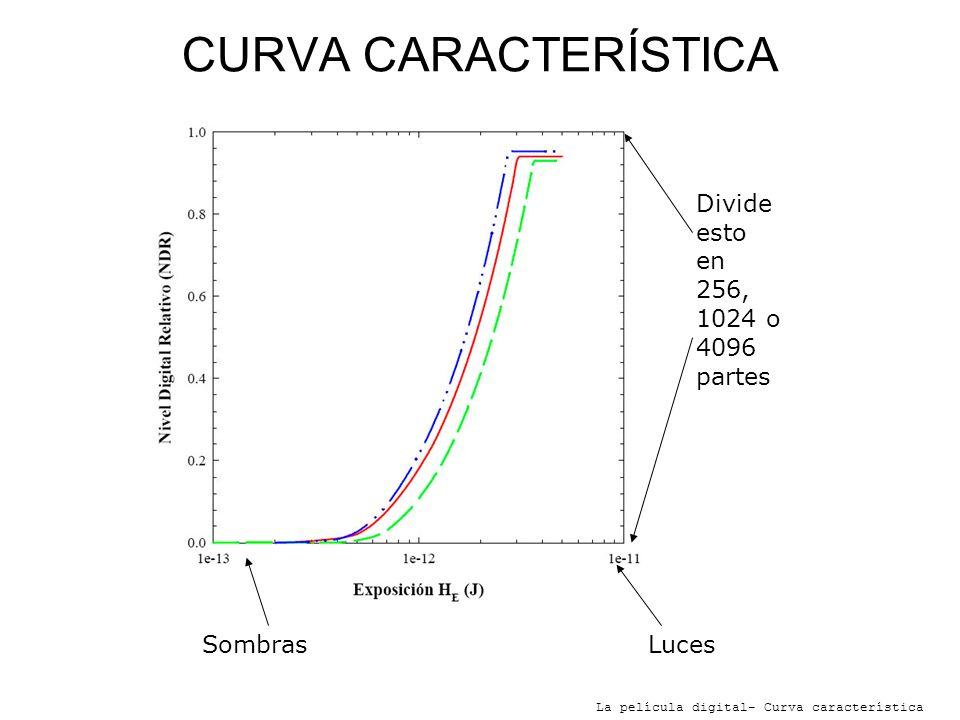 CURVA CARACTERÍSTICA Divide esto en 256, 1024 o 4096 partes Sombras