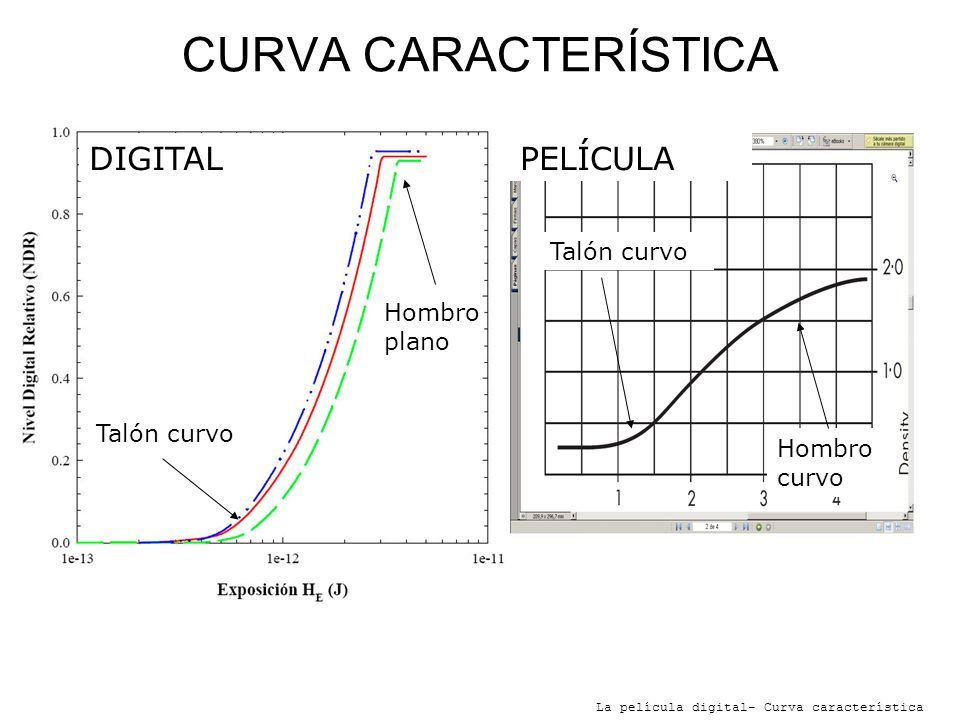 CURVA CARACTERÍSTICA DIGITAL PELÍCULA Talón curvo Hombro plano