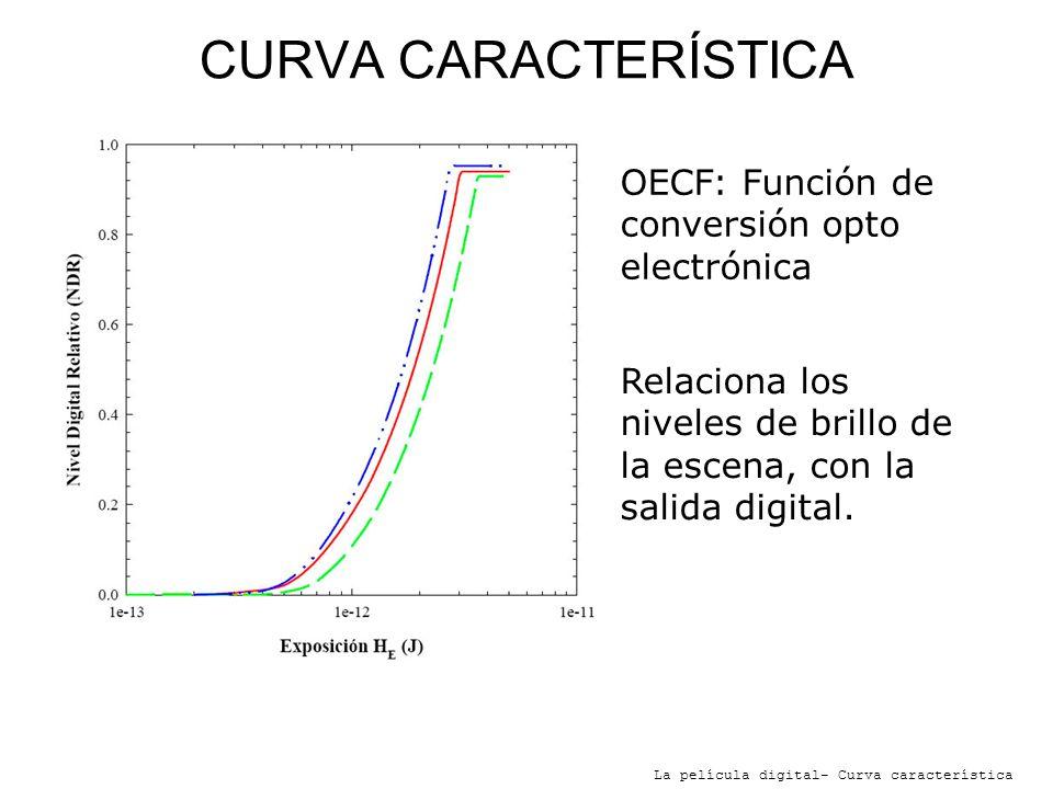 CURVA CARACTERÍSTICA OECF: Función de conversión opto electrónica