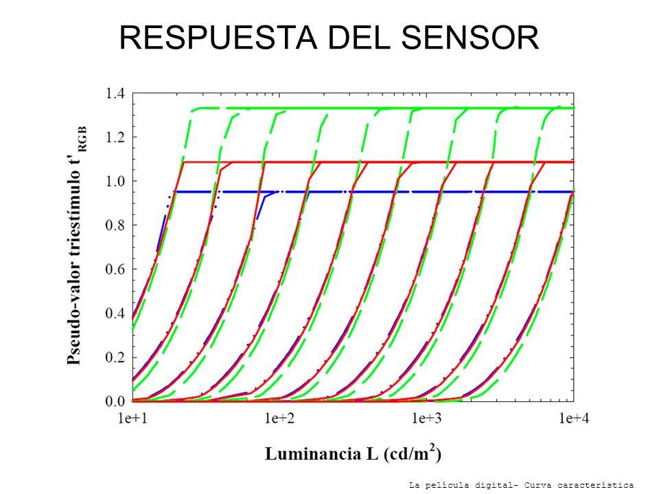 RESPUESTA DEL SENSOR -Cada curva representa un diafragma distinto. De izquierda a derecha de f:1 a f:22.