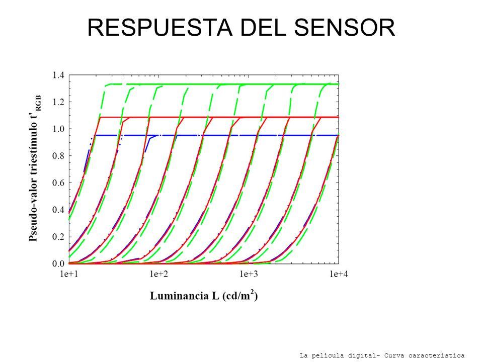 RESPUESTA DEL SENSOR-Cada curva representa un diafragma distinto. De izquierda a derecha de f:1 a f:22.