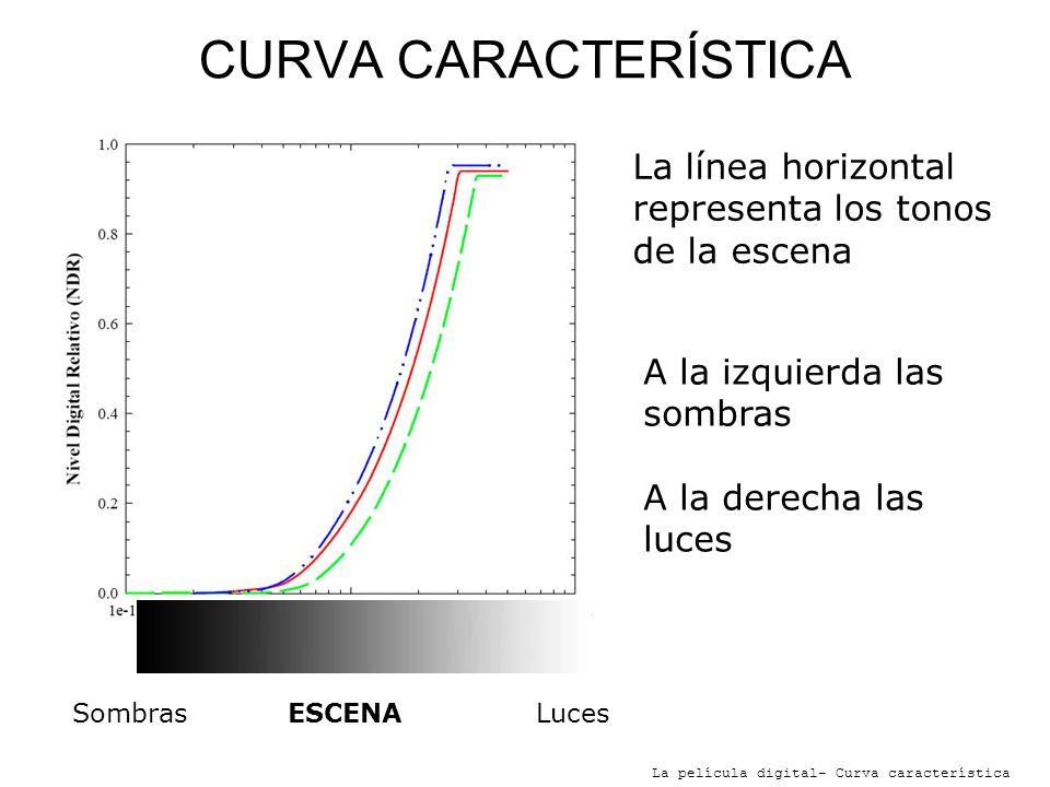 CURVA CARACTERÍSTICALa línea horizontal representa los tonos de la escena. A la izquierda las sombras.